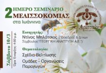 Μελισσοκομικό διήμερο Σεμινάριο στα Ιωάννινα - Μελισσοκομική Επιθεώρηση