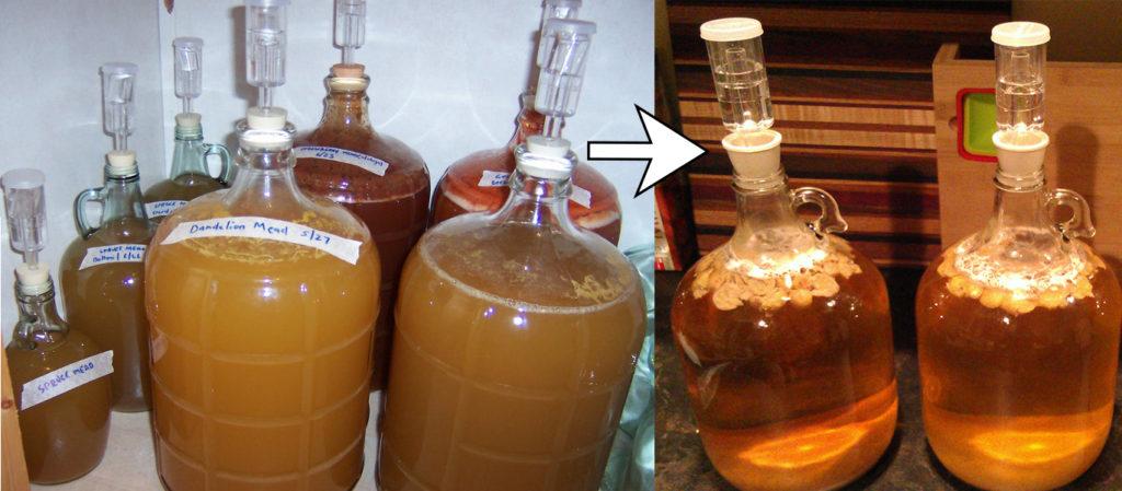 Εικόνα 2: Το αρχικό θολό διάλυμα μελιού μετά τη ζύμωση και το φιλτράρισμα του μελού γίνεται διαυγές