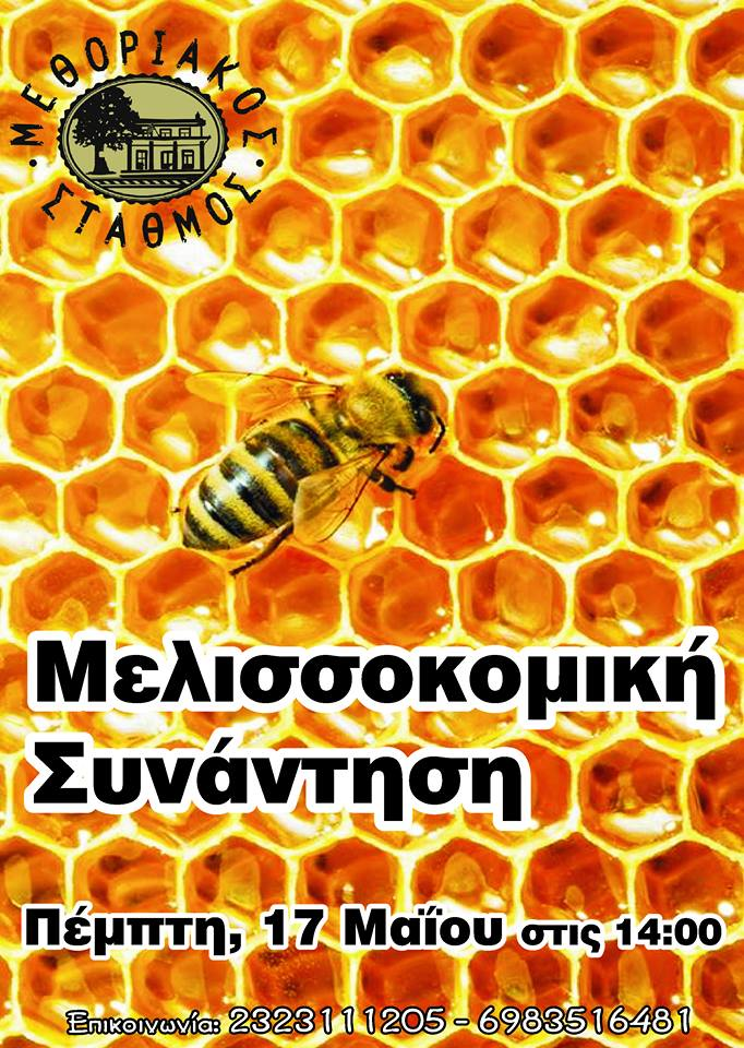 Μελισσοκομική Συνάντηση Βυρώνεια 2018
