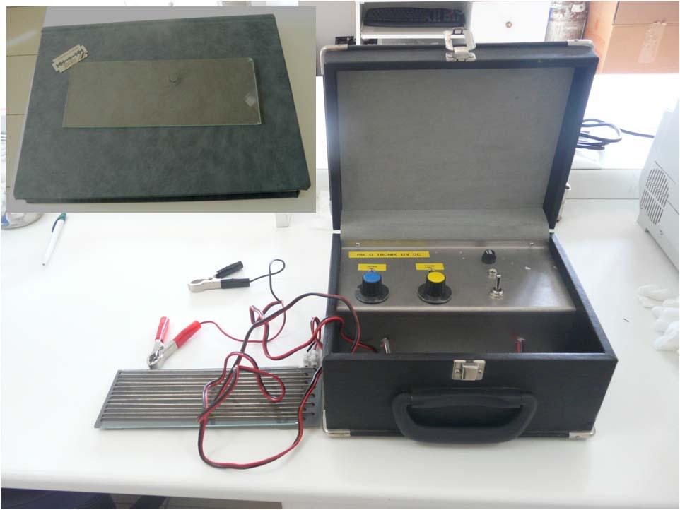 Εικόνα 4: Συσκευή συλλογής δηλητηρίου